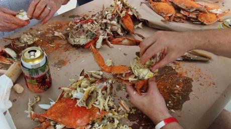 crabs1